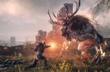 "The Witcher 3: Wild Hunt (E3 2014 ""Sword of Destiny"" Trailer)"