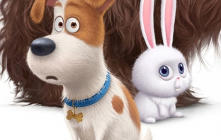 The Secret Life of Pets (Teaser Trailer)