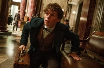 Fantastic Beasts and Where to Find Them (Official Trailer)